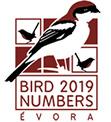Bird Numbers 2019
